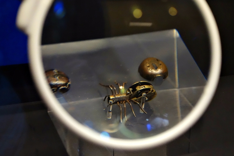 Automaton spider (Germany, 1604 - valosalo | ello