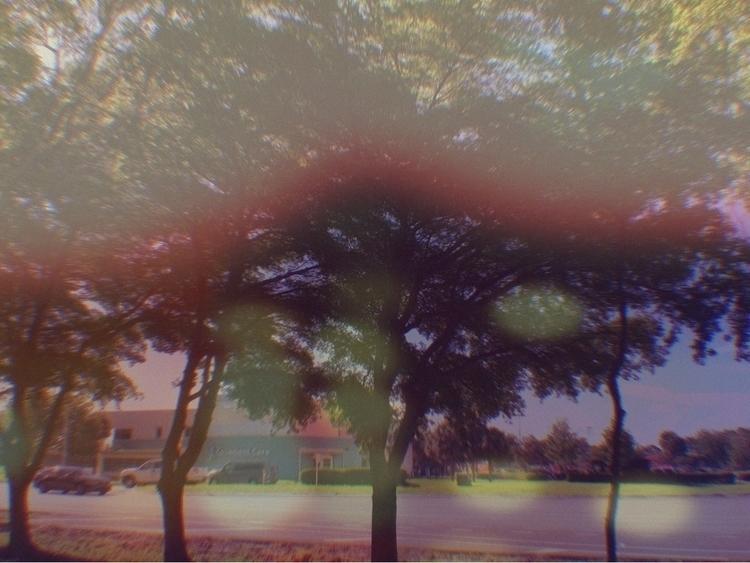 Window Apps - mikefl99, ello, nature - mikefl99 | ello