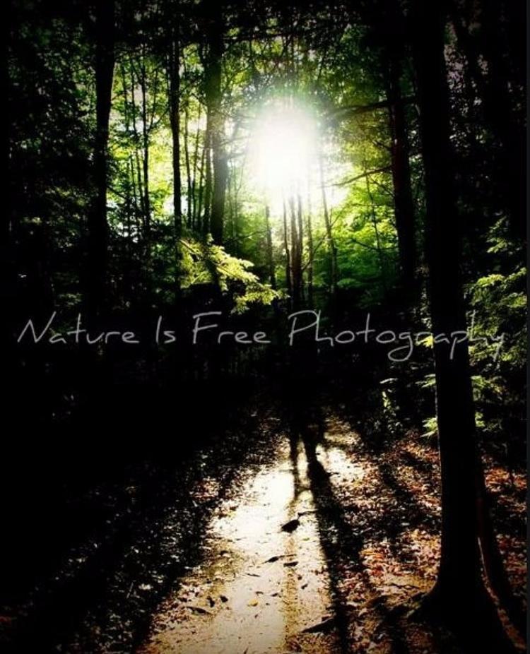 stuck ways relate return nature - natureisfree | ello