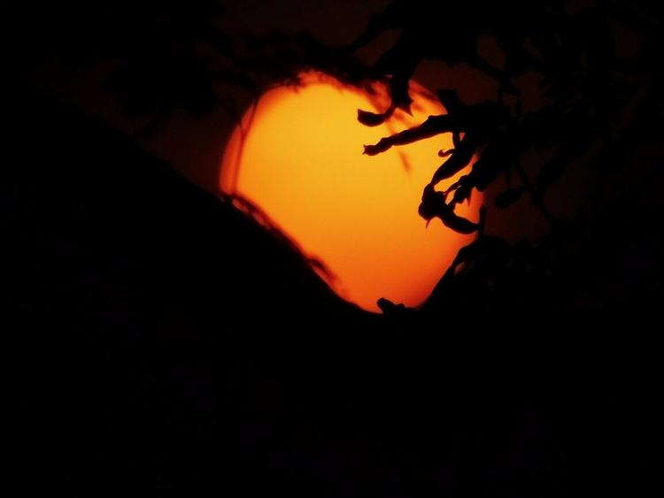 Watch sun - ello, photography, nature - athulnair | ello