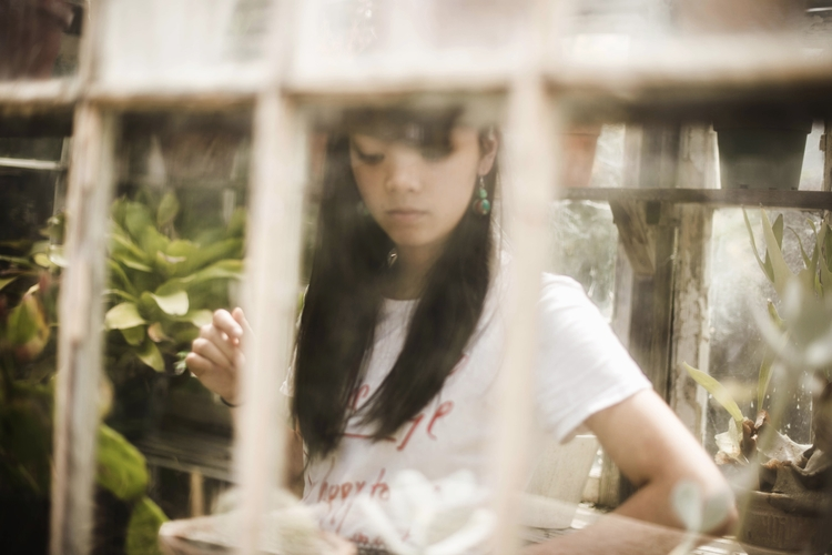 holly cobwebbed window - adriannatan | ello
