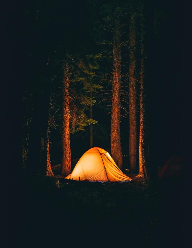 Weekend woods - mrbrodeur | ello