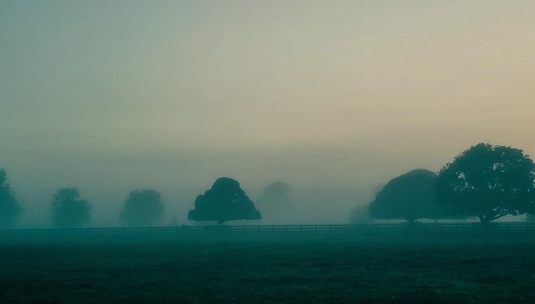 fencourt blue - fog, canon5d, canon - deanmcleod   ello