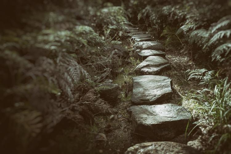 Avenue avenue stepping stones f - garylight | ello