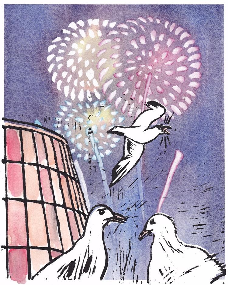 Project Seagulls freaking firew - mydiagonallife | ello