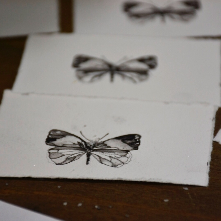 series butterflies - ink, painting - alexakarabin | ello