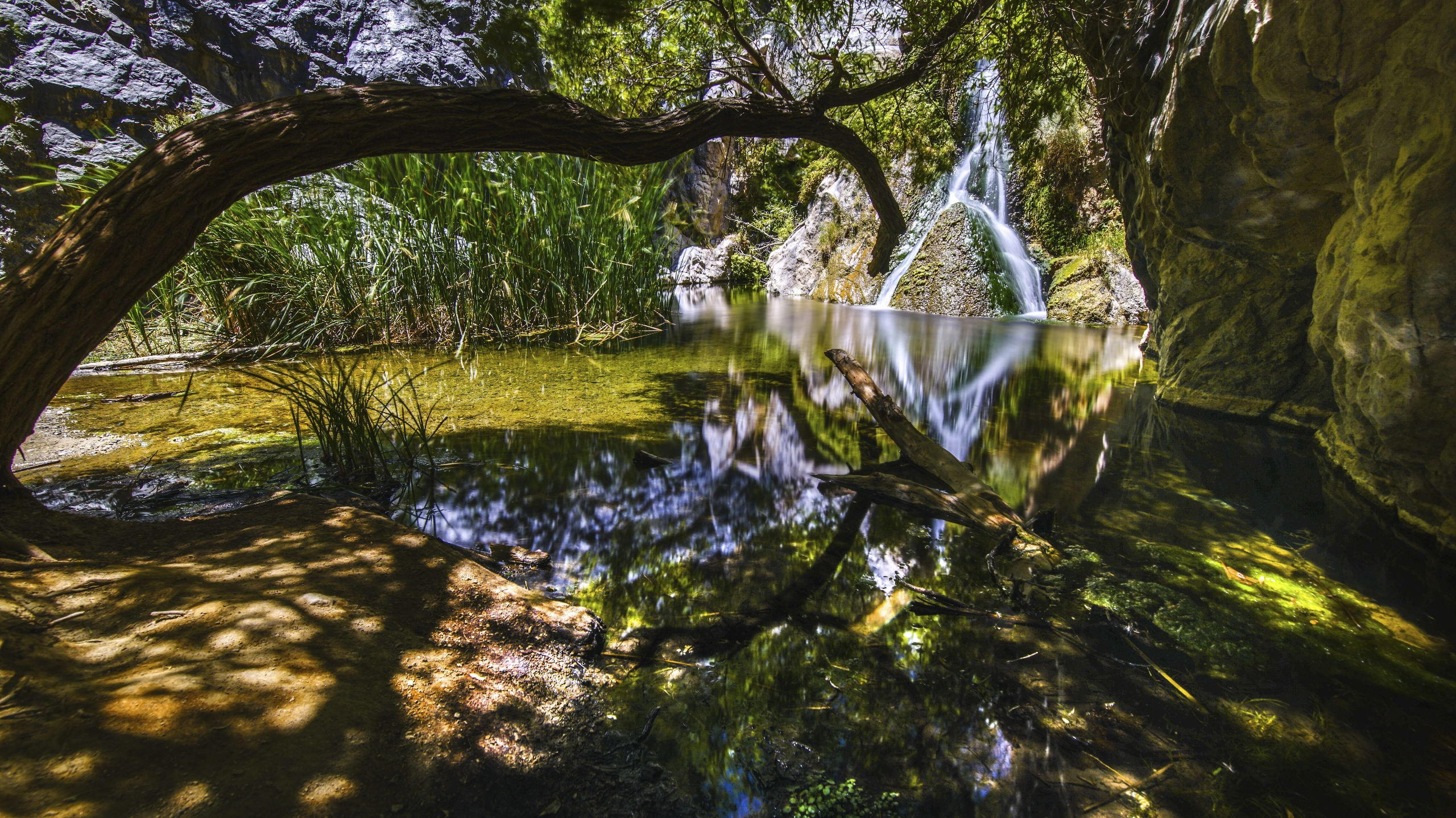amazing oasis middle hottest pl - thatusernameistaken | ello