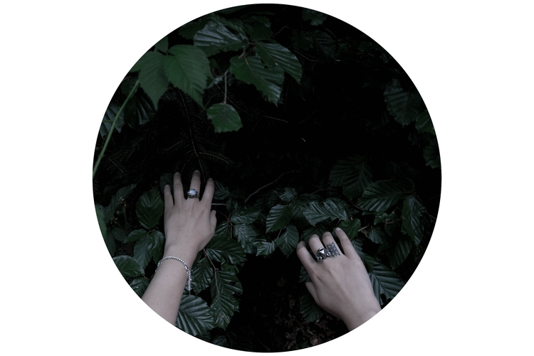 reachingout, hands, nature, leaves - blackwyrt | ello