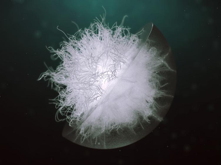 Deep Ocean - deepintheocean, 3d - darioveruari | ello