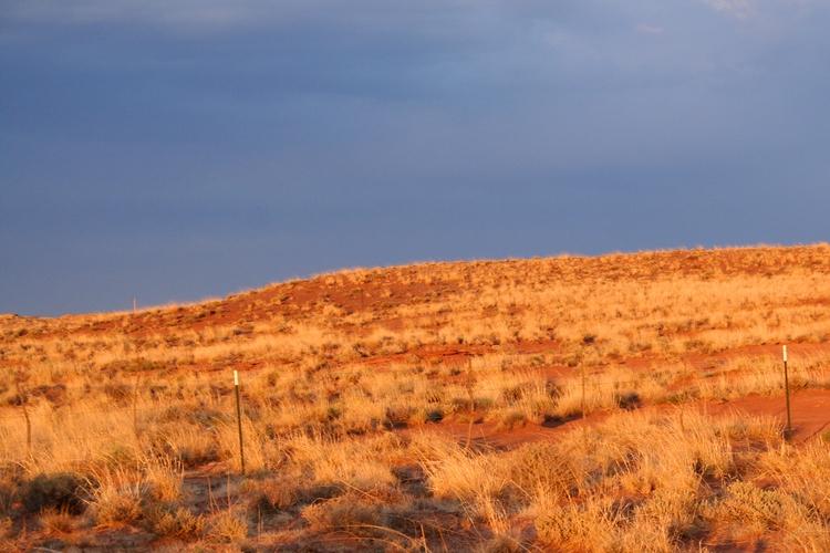 Desert Color Contrast. McHood C - vujadav17   ello
