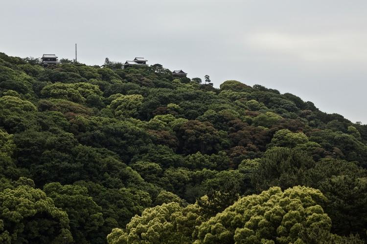 Burg Matsuyama Ehime - greens, fullscreen - hannesb   ello