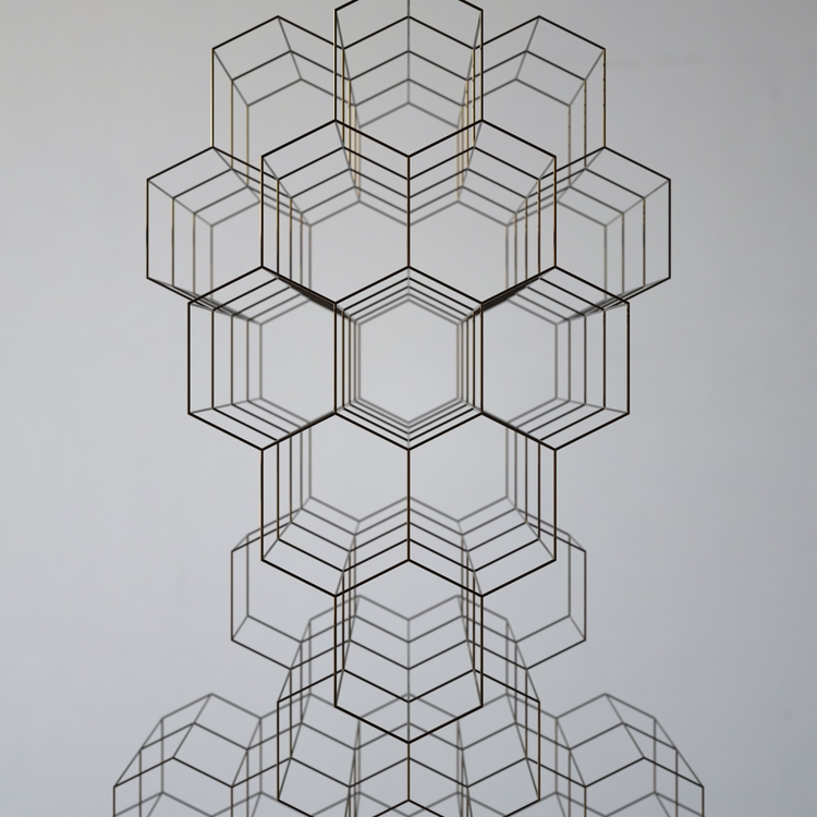 Intangible   Voronoi Wire [17.0 - luigihonorat   ello