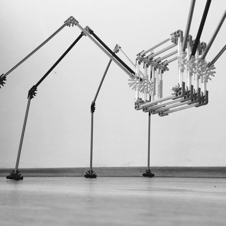 spider, installation, sculpture - dorian_gray | ello