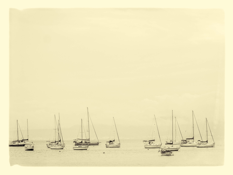 Boats - moliv | ello