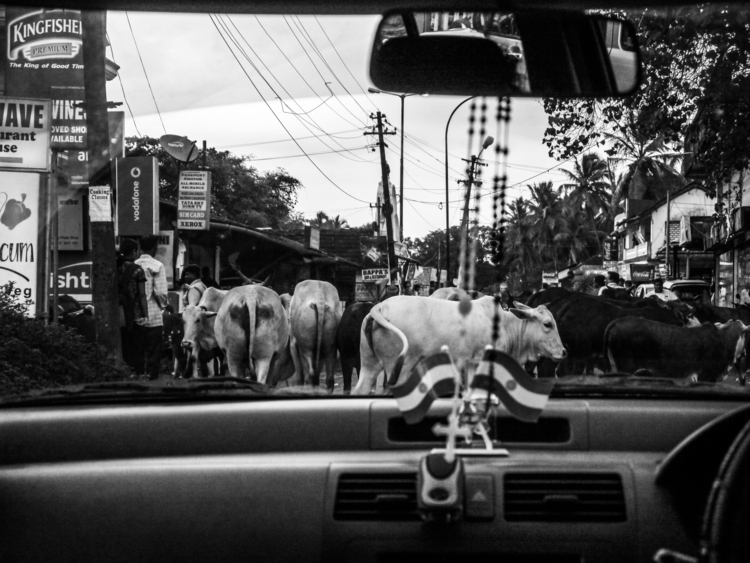photography, blackandwhite, india - hi_fny | ello