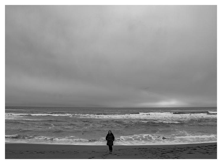 Bodega Bay Dunes, CA - guillermoalvarez   ello
