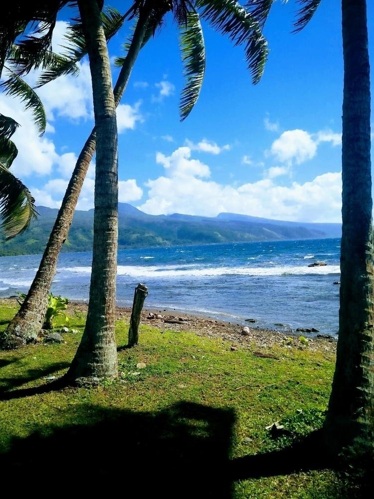 tahitigotmelike#tahitiiti#tahitinui#nature#ocean#island#coconut#sun - unvit | ello