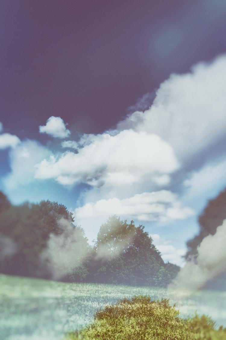 Histamine - photography, landscape - marcushammerschmitt | ello