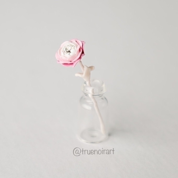 Gentle white pink miniature ros - truenoir | ello