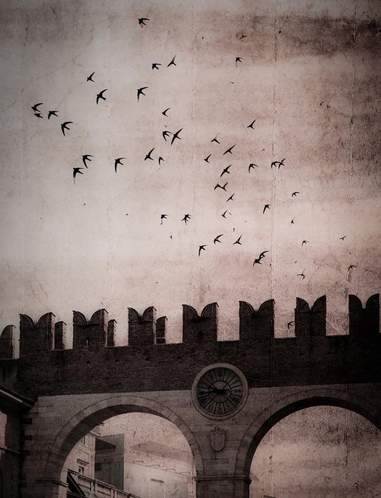 Verona - jemhayward | ello