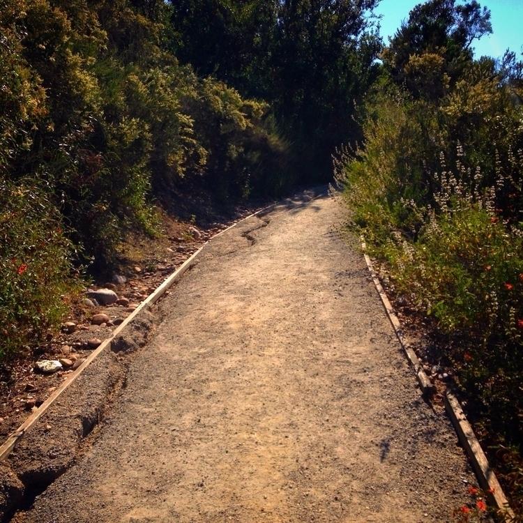 path journey future. choose ste - alexgzarate | ello