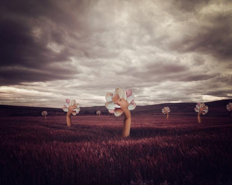 Harvest - chrystalolivero | ello