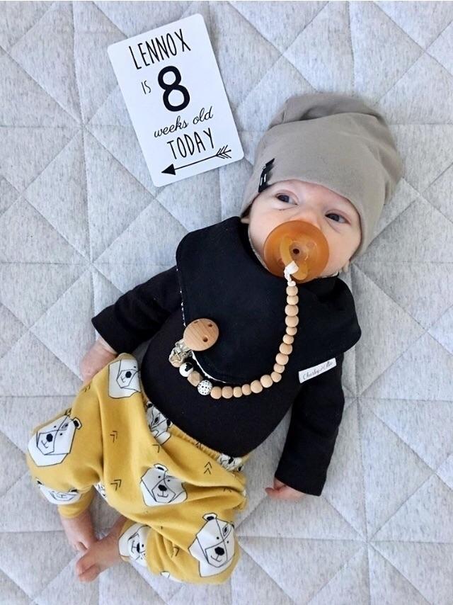 mustard bear harems popular cho - littleboubba | ello