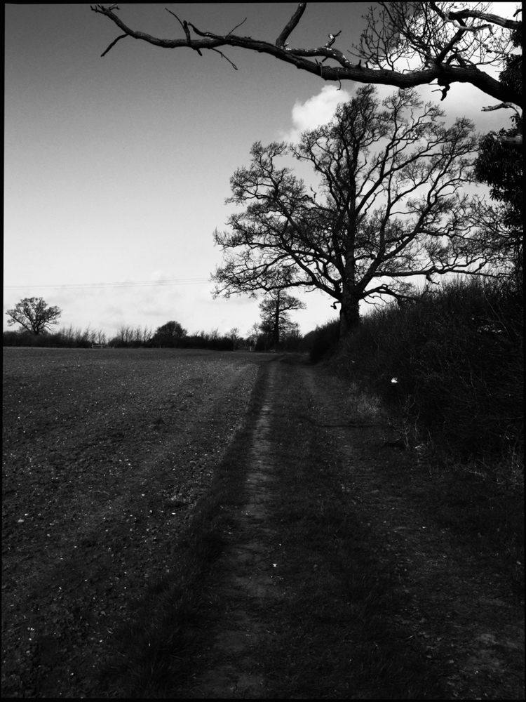 Section ancient road Leicesters - tony-shelley-photographer   ello