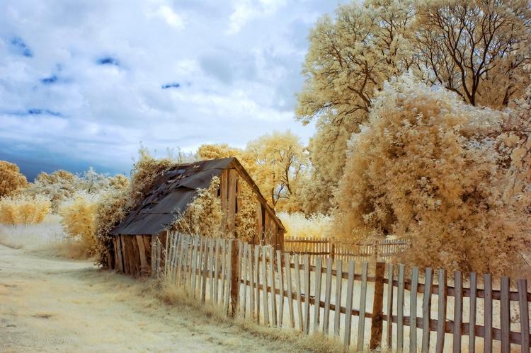 Hut, Baddesley Clinton - infrared - toni_ertl | ello