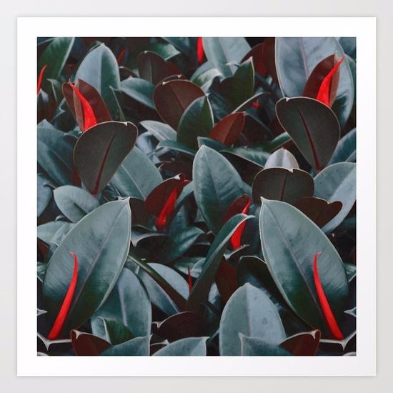 Tropical Leaves / Vector Illust - lostanaw   ello