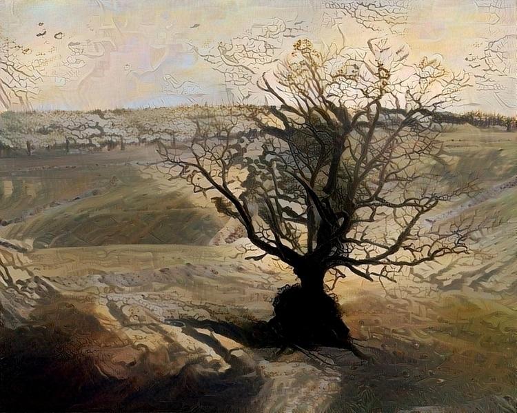 moorland - photography, tree - kenlong | ello