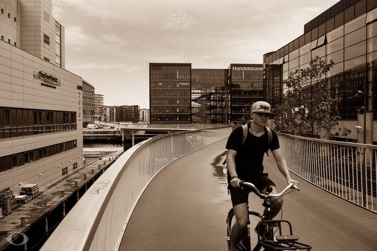 Bicycle Snake capitol city worl - velviake | ello