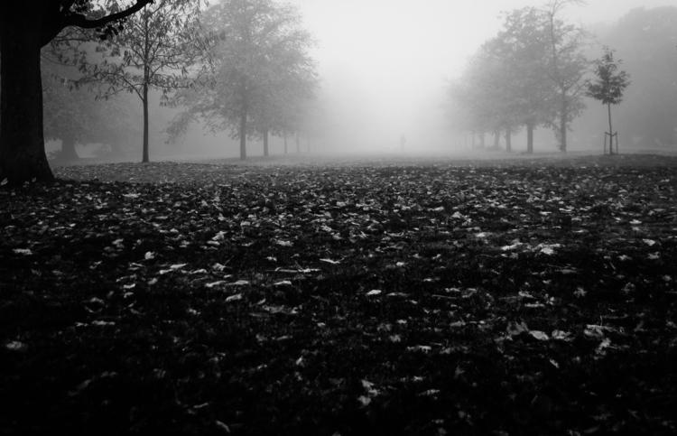 Unsolved Mystery | Greenwich Pa - fabianodu | ello