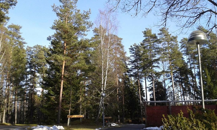 BISÄTTNING BLOMINL. Skogskyrkog - skogskyrkogardar   ello