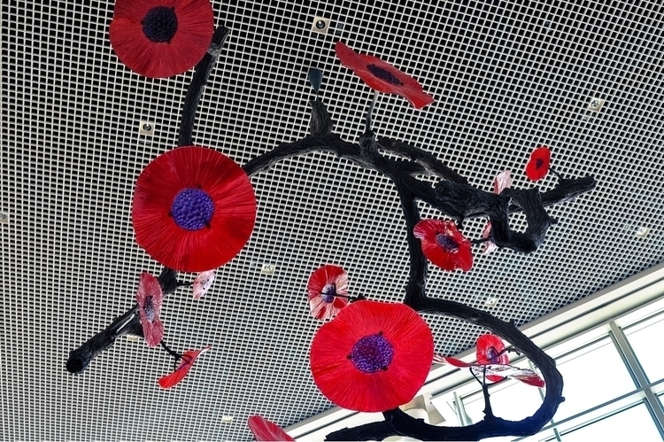 Flowers - portland, pdx, oregon - fulsoul | ello