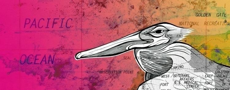 Pelican Todd Kurnat, 11x28 ink - inkletterman | ello