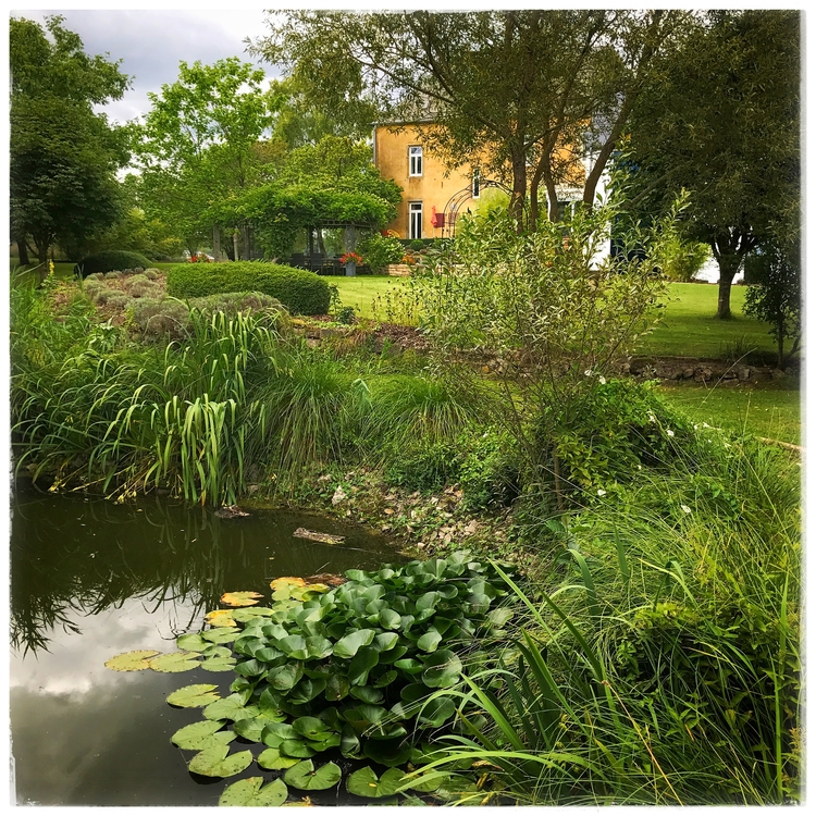 pondwithaview, landscaping, voluptuousnature - willkreutz | ello