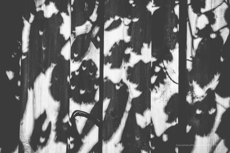 Solar eclipse fence shadow foli - francisdufour | ello
