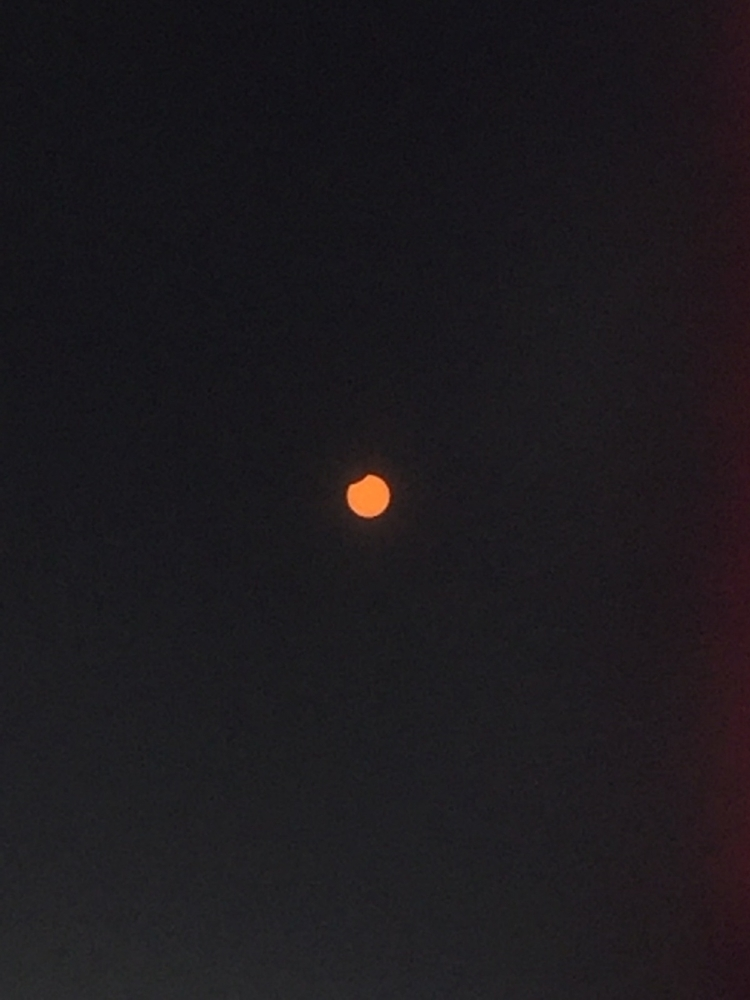 Eclipse Sun Moon Apps - mikefl99 - mikefl99 | ello