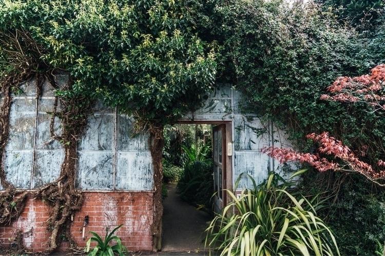 Swansea botanics - swansea, wales - timbow | ello