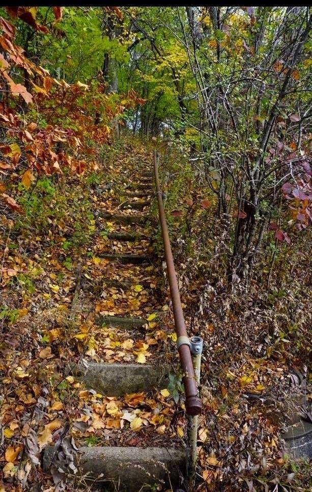 Hidden Path. Karen Exiner - exinerartstudio   ello
