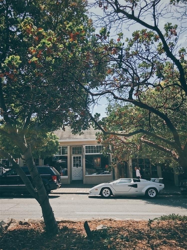 week car Monterey Bay - lamborghini - tramod   ello
