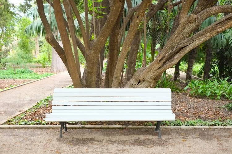 beauty flow, Botanical Garden,  - femkehabets   ello