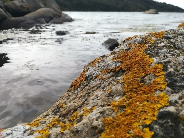Norway / 25.08.17 - delylah | ello