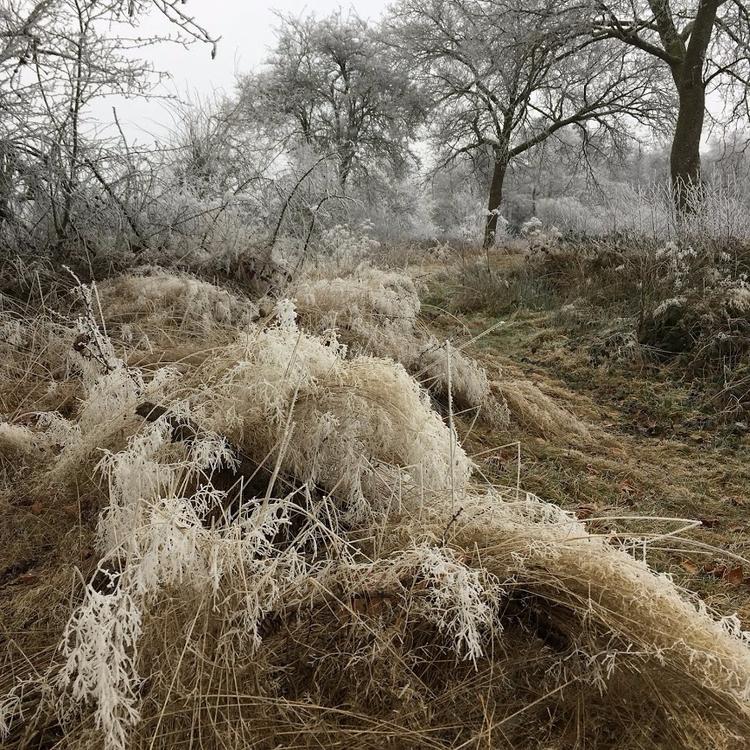 Winter landscape photography, f - nothingeverythingbutdesign | ello