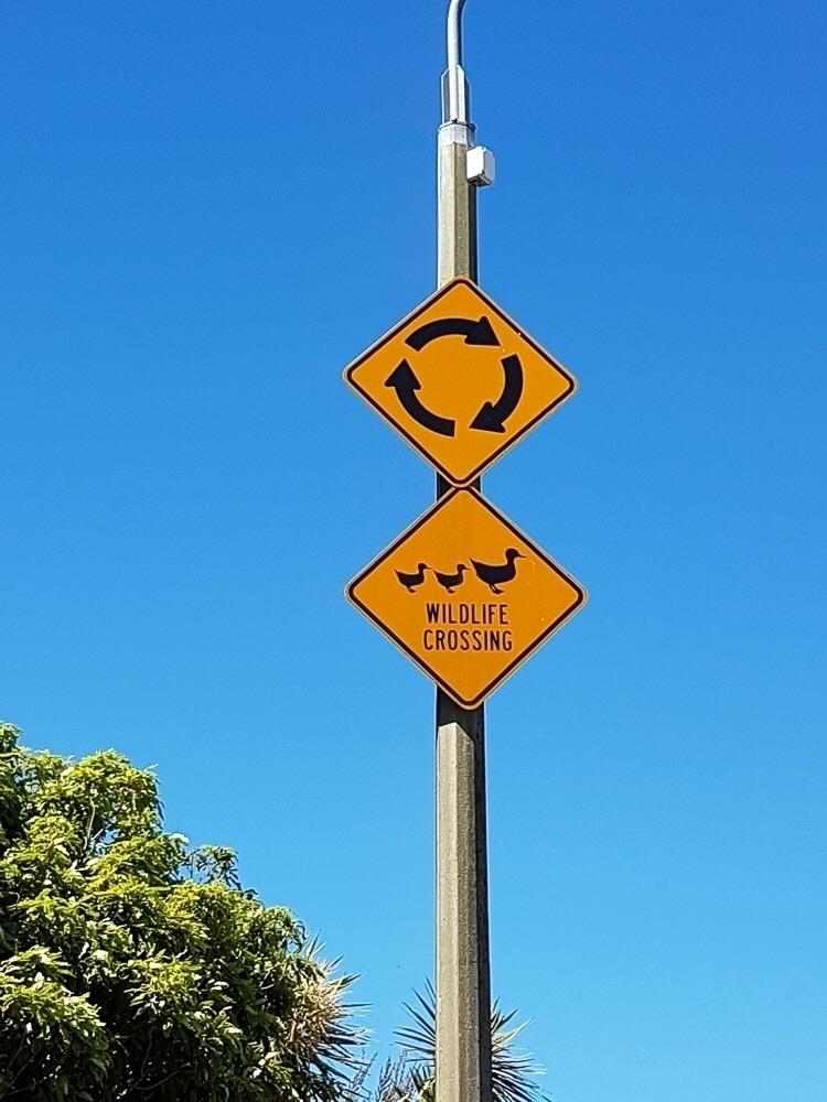 Watch - signs, sinsunday - thereshegoesnow | ello