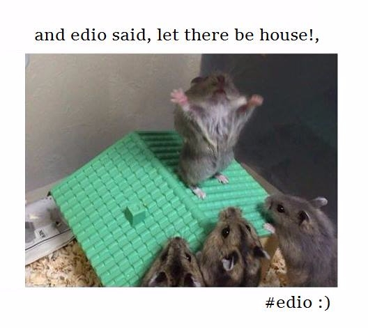 https://ello.co/edio1 - edio1 | ello