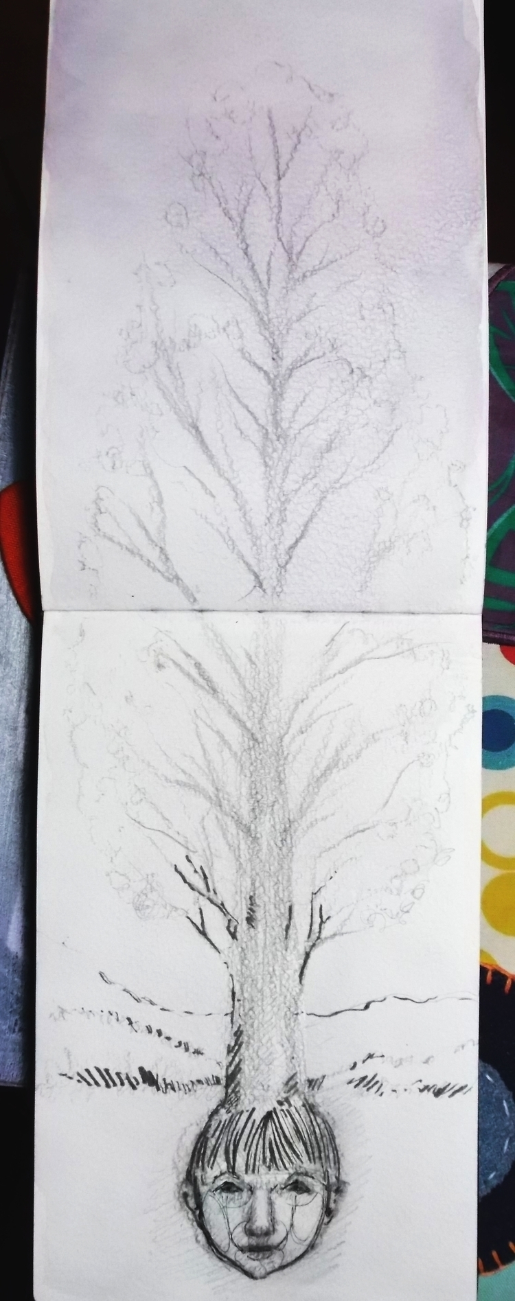 Seed Sketch/Graphite/ Chinese i - euric | ello
