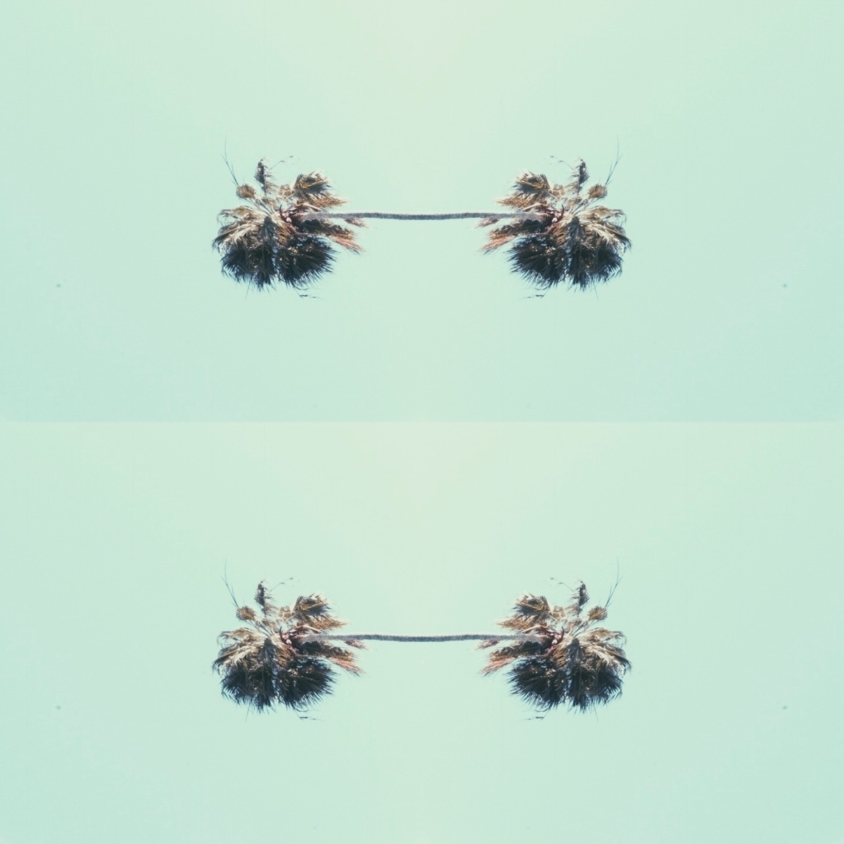 Palm tree earrings concept - design - spacesbeats   ello