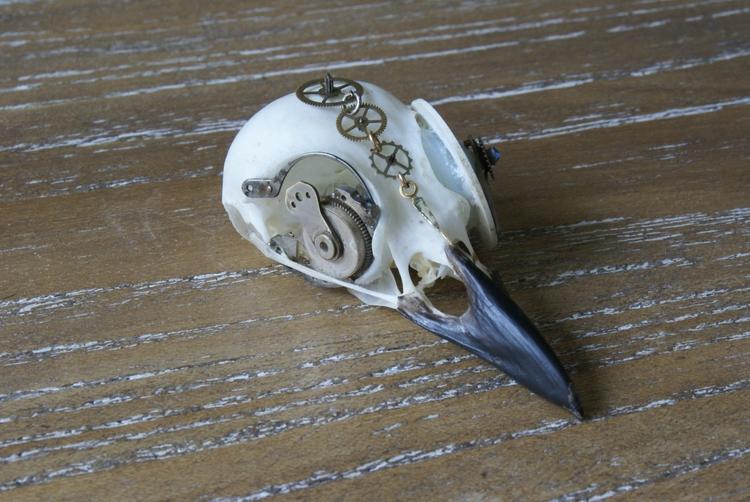 Birds - skulls, steampunk, punk - sgtjonnymcdeath | ello